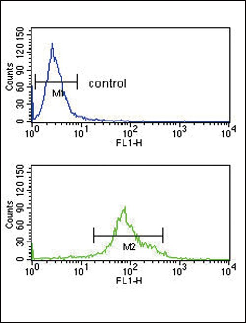 anti-HSD17B3 antibody Flow Cytometry (FC/FACS) (FC/FACS) image