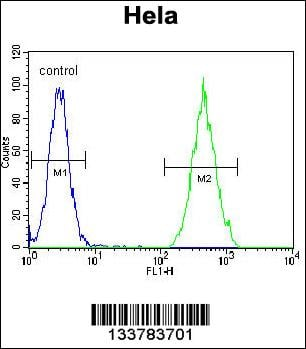 anti-RARA antibody Flow Cytometry (FC/FACS) (FC/FACS) image