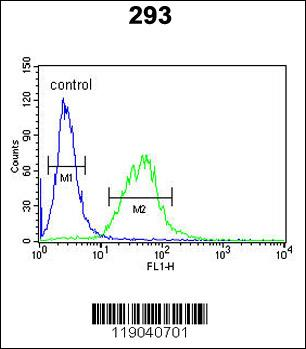 Flow Cytometry (FC/FACS) BCOR.